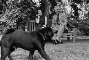 duchess and duke of windsor black pugs